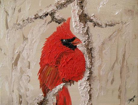 Winter Cardinal by Fawn Whelahan