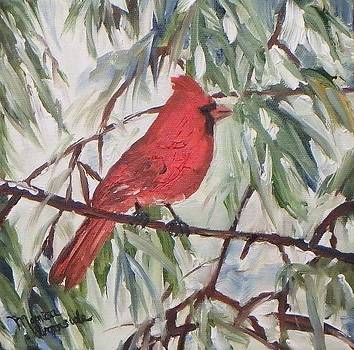 Winter Cardinal by Monica Ironside
