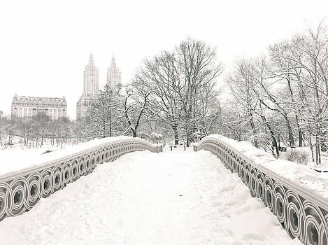 Winter - Central Park - Bow Bridge - New York City by Vivienne Gucwa