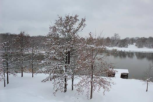 Winter by Charlotte Craig