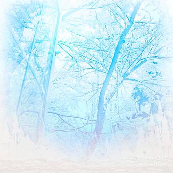 Jo Ann Snover - Winter chill