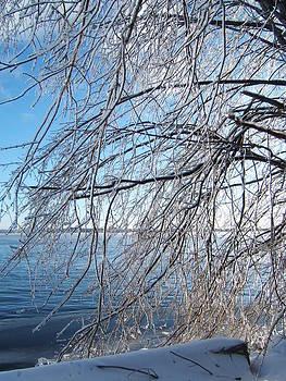 Winter Chill by Margaret McDermott
