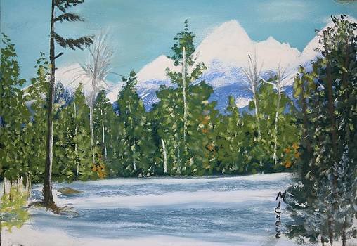 Winter Clearing by Michele Turney
