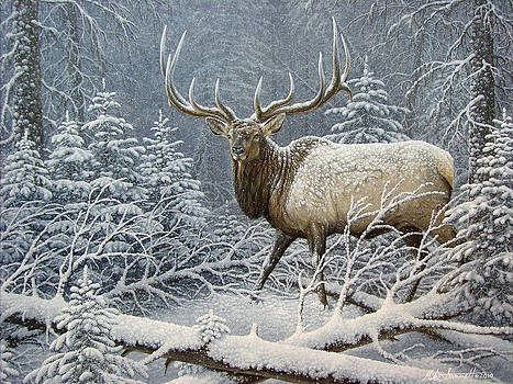 Winter Coat by Mike Stinnett