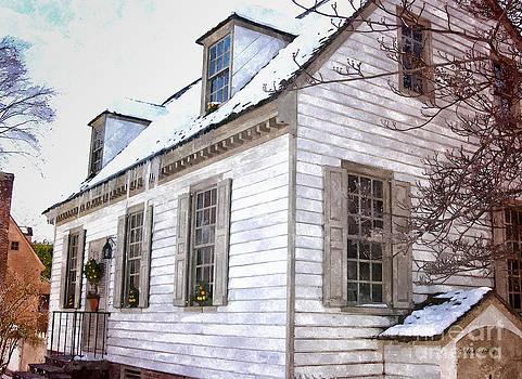 Shari Nees - Winter Cottage