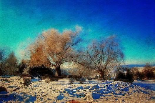 Winter cover by Dan Quam