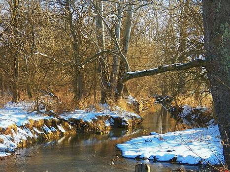 Winter Creek by Joyce Kimble Smith