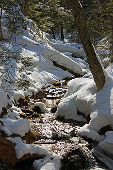 Winter Creek by Megan Noble
