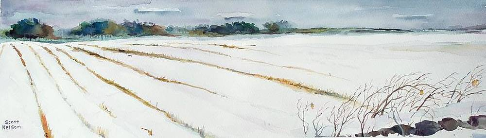 Winter Crop by Scott Nelson