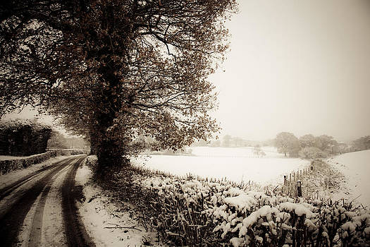 Winter Cross Lane by Dawn Bowery