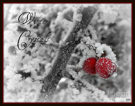 Winter Crystals on Red by Heidi Manly