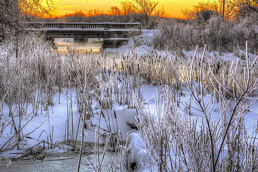 William Reek - Winter Dawn on the River 2