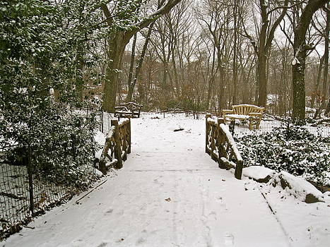 Winter Day In The Park by Felix Zapata