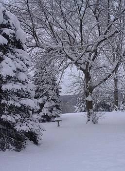 Winter Day in Wisconsin by Rachel Tilseth