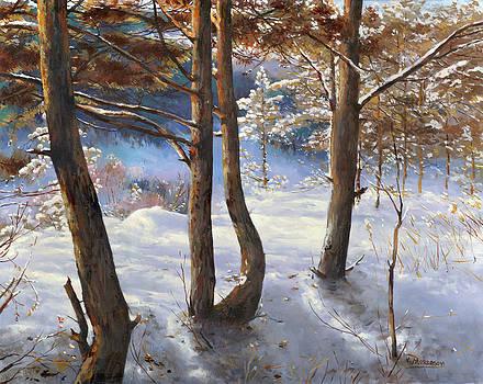 Winter day by Victor Mordasov