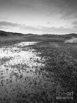 Winter Dunes by David Hanlon