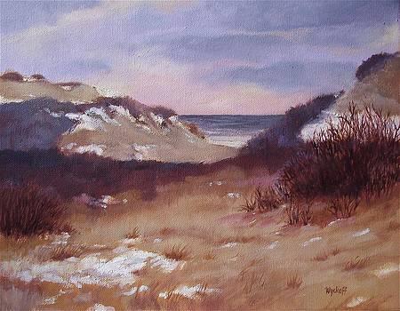 Winter Dunes by Karol Wyckoff