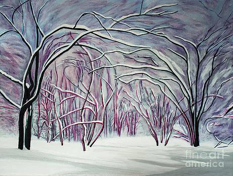 Barbara McMahon - Winter Fairies
