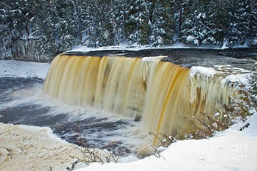 Winter Falls by Mike Wilkinson