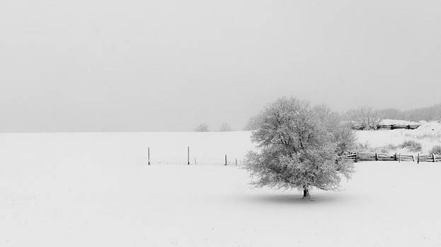 Winter Farm A by Mike Southern