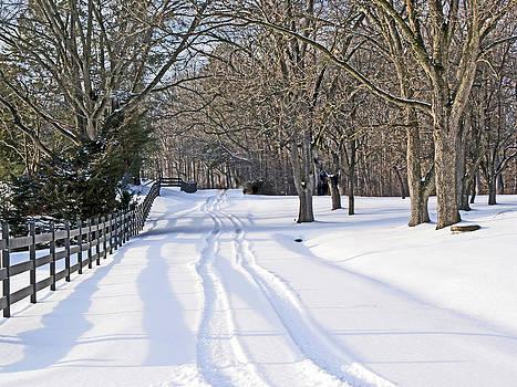 Winter Farm Lane by Bill Talich