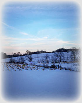 Winter Field by Chanda Yoder