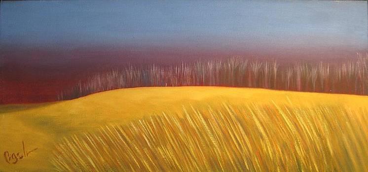 Winter Field by Gloria Cigolini-DePietro