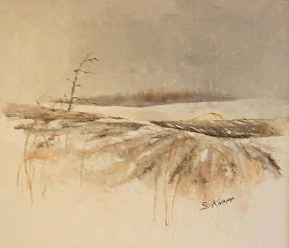 Winter field by Steve Knapp