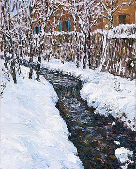 Winter Flowing by Steven Boone