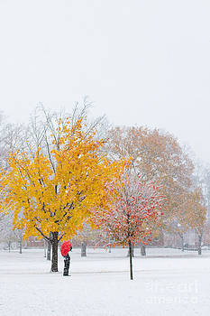 Winter Foliage by Denise Lilly