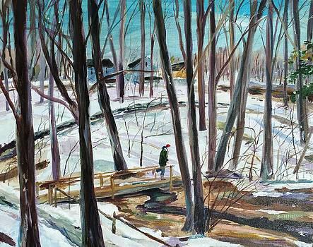 Winter Footbridge by Scott Nelson