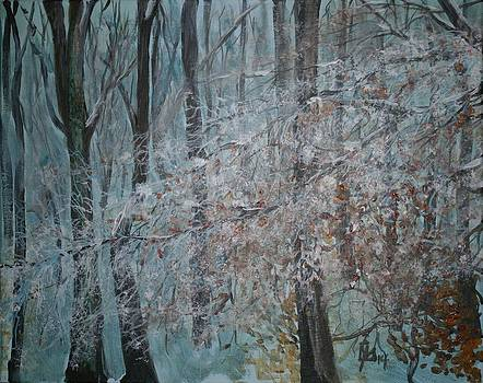 Winter forest by Lee Stockwell
