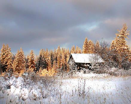 Winter Glow by Doug Fredericks