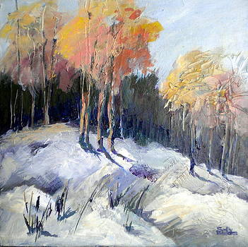 Winter Glow by Sally Bullers
