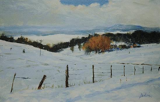Winter by Greg Clibon