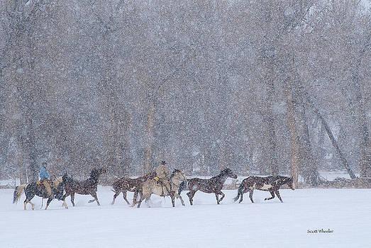 Scott Wheeler - Winter Horse Drive