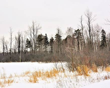Valerie Kirkwood - Winter Hues