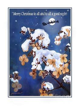 Winter Hydrangea With Santa's Sleigh Christmas Card by Joan A Hamilton