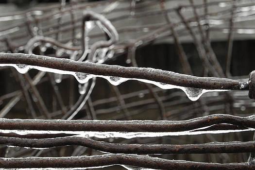 Winter Ice by Daniel J Kasztelan