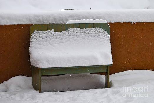 Winter Bench by Wendy Girard