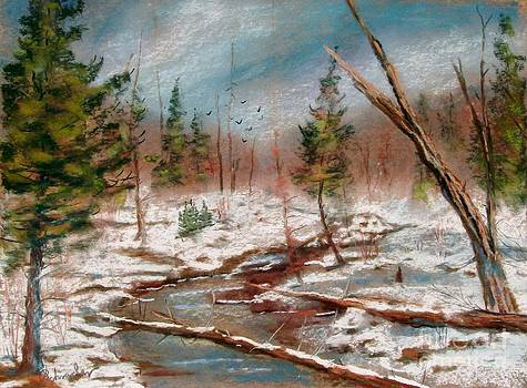 Winter in Canane by Bruce Schrader