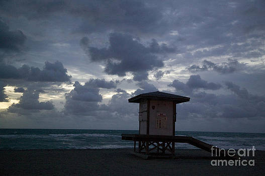Winter in Florida by Roy H Wagner ASC