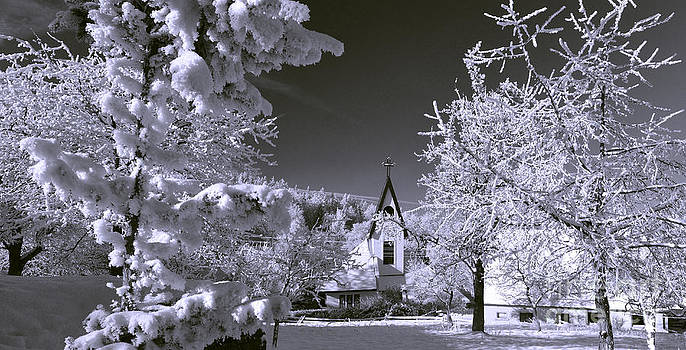 Winter in Michalowice b/w by Lilianna Sokolowska