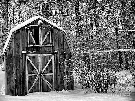 Winter in New England by Nancie DeMellia