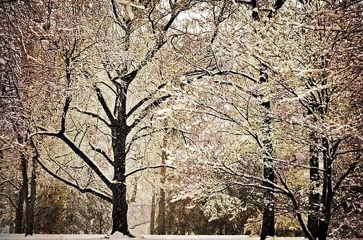 Marty Koch - Winter In St. Louis