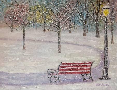 Winter in the Park by Terri Cowart