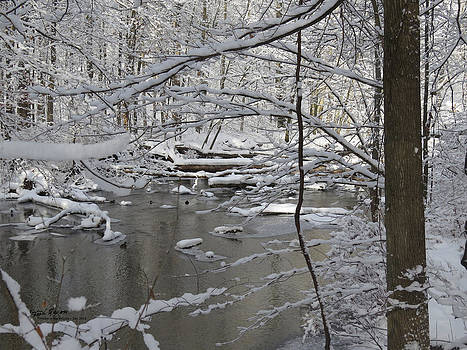 Winter in the Woods by Steph Maxson