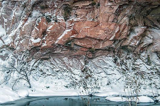 Tam Ryan - Winter in West Fork