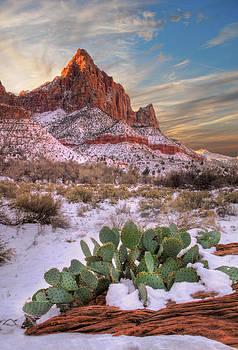 Utah Images - Winter in Zion National park Utah
