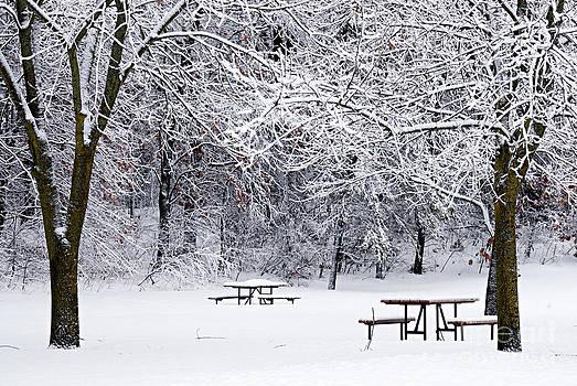 Larry Ricker - Winter is No Picnic
